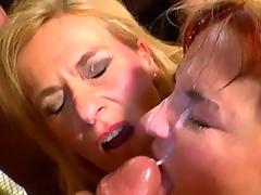 ball licking balls